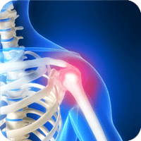 Chiropractor Shoulder Pain
